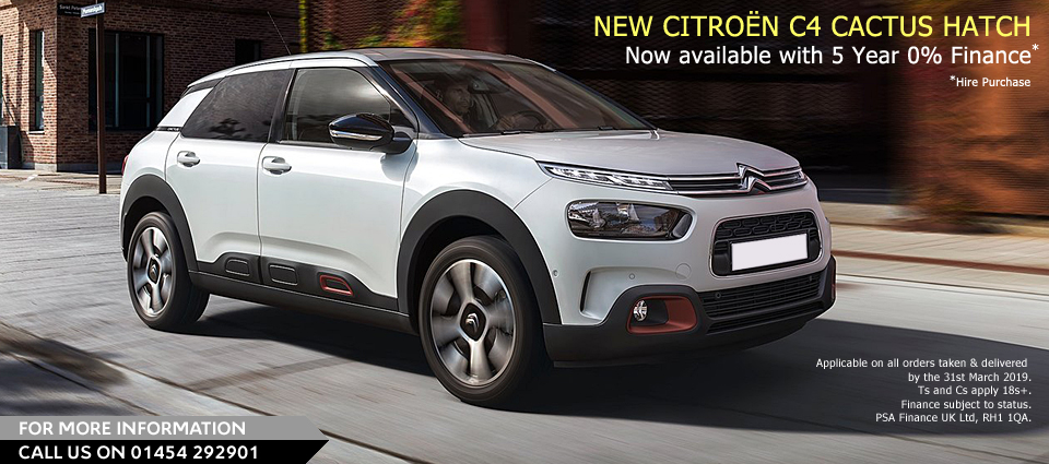 New C4 Cactus OFFER